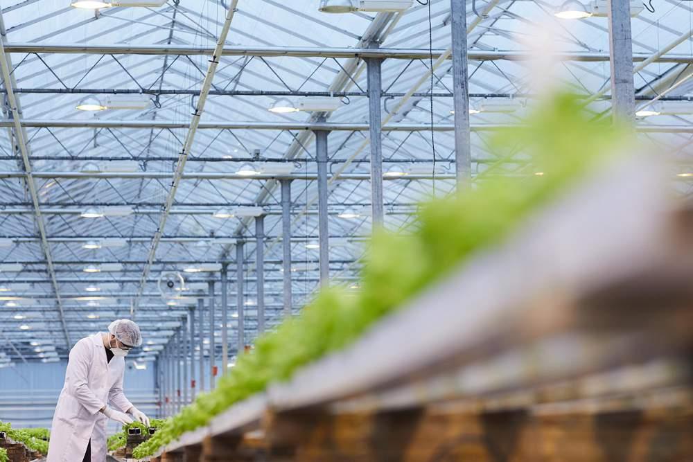 Bild für Mit Daten die Innovation in der Agrartechnik beschleunigen